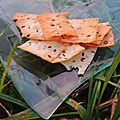 Crackers sésame et lin