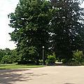 Auprès de mon arbre chez filopattes