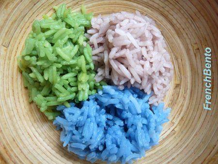 all_colors__rice_2__french_bento