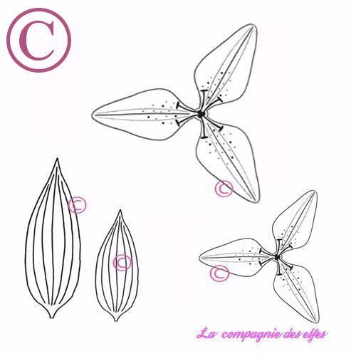 Lys ensemble-13,90e