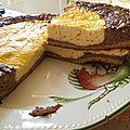 Cheese cake chocolat vanille(dukan)