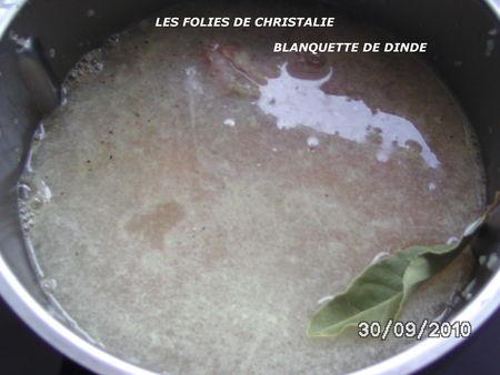 BLANQUETTE_DE_DINDE_1