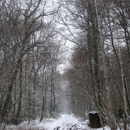 neige_pascale_a