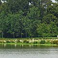 Lac de Tastoa 28061638
