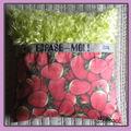coussin 65 x65 fraise herbe novembre 2010 copie