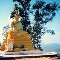 Phrathat Doi Kongmoo Bouddha
