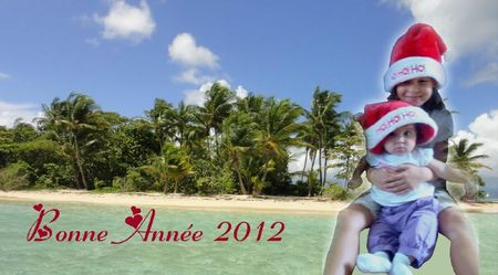 Bonne Année 2012 - Loupettes carte 2