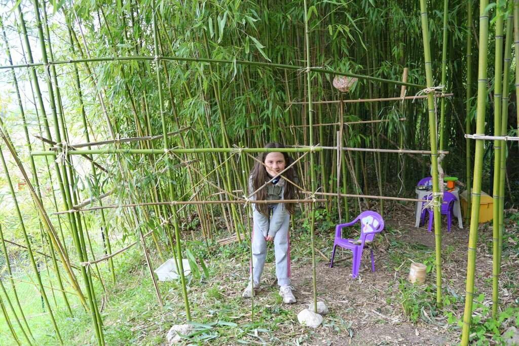 D co construire cabane jardin 12 poitiers poitiers carte poitiers meteo 10 jours poitiers - Cabane jardin construire besancon ...