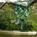 IMG_8978 - t