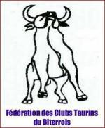 logo fede 2013