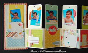 Alexam_mini_tags_lift_ES_Fabric_S_RDV_Scrap_7