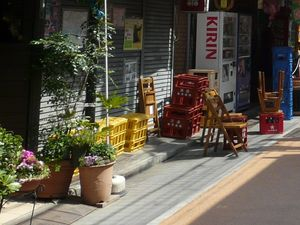 Canalblog_Rues_Plantes16_Yanaka_Ginza_D_tail01