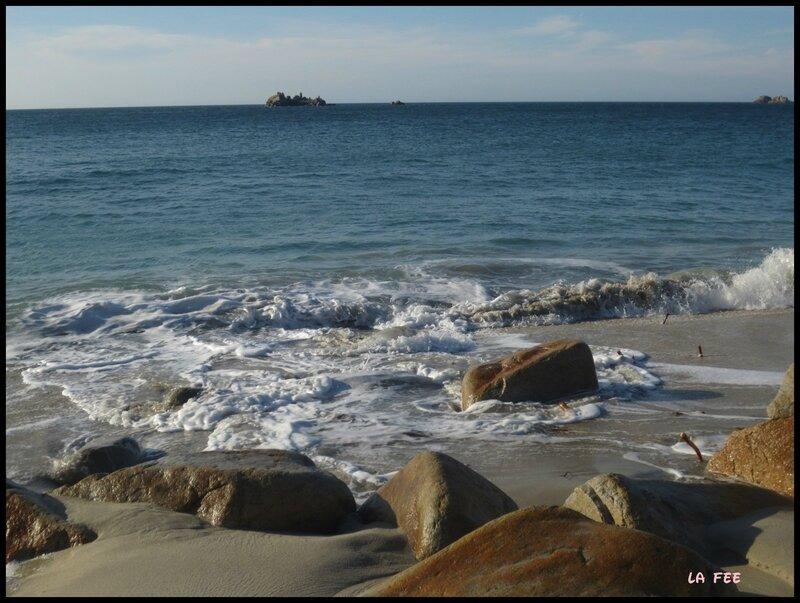 plage (15)