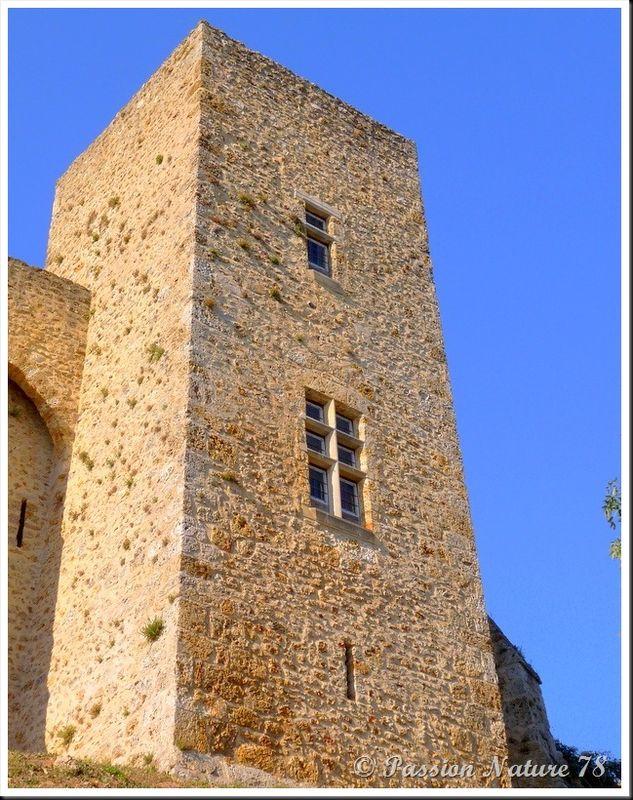 Le château de la Madeleine (6)