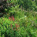 Jardin de la Source 12061626