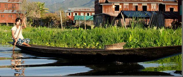 20111117_1635_Myanmar_8415