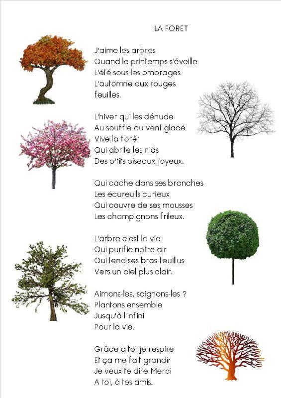 Préférence La chanson de la forêt - les Grands de Lamairesse IW88
