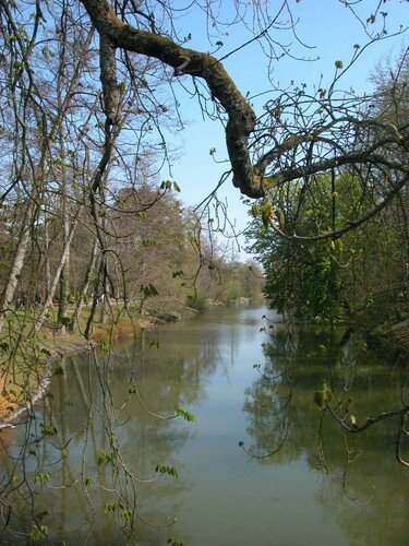 La Source au Parc Floral d'Orleans n°4