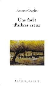 Une forêt d'arbres creux, Antoine Choplin