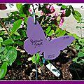 Les étiquettes du jardin (3)