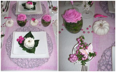 2009_09_06_table_rose_courge6