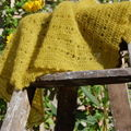 Eva's shawl en kid seta