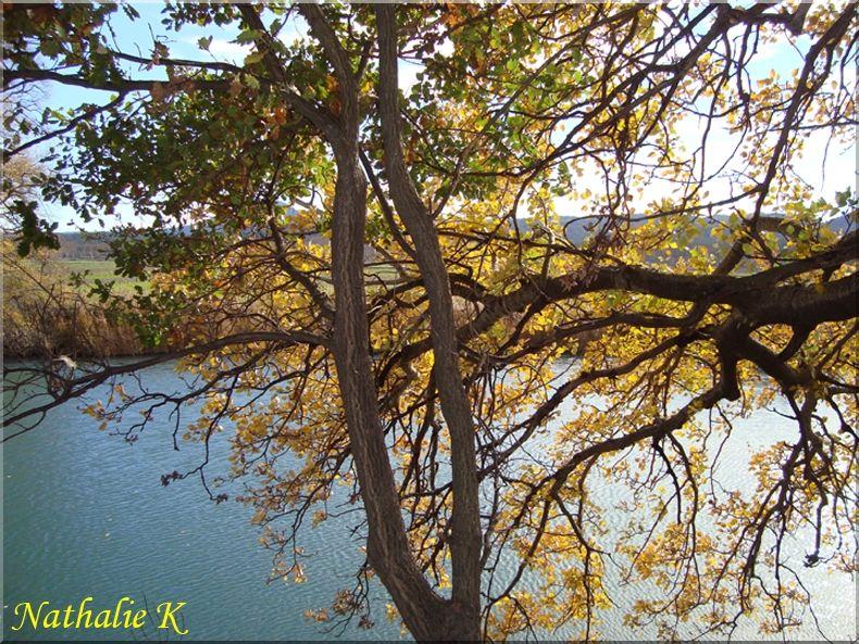 _c_LNK_le_12_novembre_2010_023_copie
