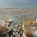 Glace sur le lac du bourget (4)