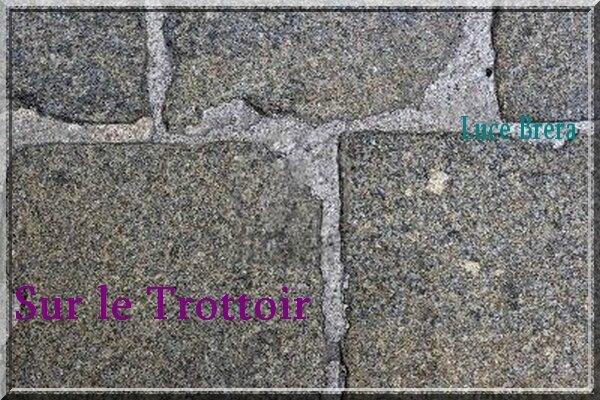 4993920-gros-plan-de-pav-s-sur-le-trottoir