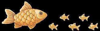 tube poissons 6