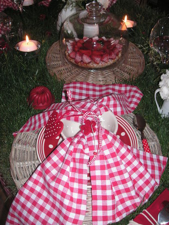 table_picnic_008