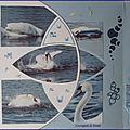 Bain du cygne (3) 004