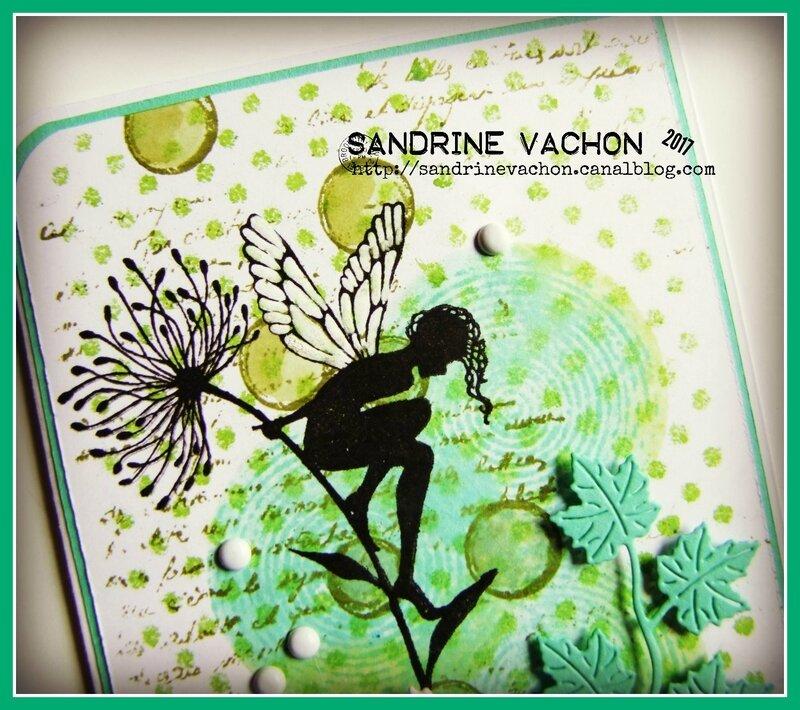 Sandrine VACHON défi 493 juin 2017 (2)