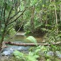 20070404_Way back from Cooktown_002