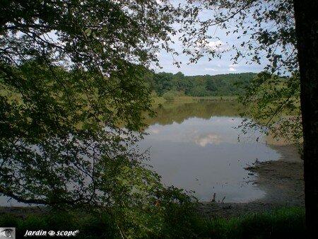 étang du marais à Drulon