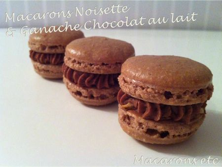 Macarons noisettes 1