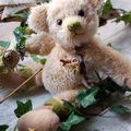 Ours de collection / Collection teddy bears