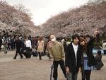 805_Parc_de_Ueno