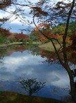 2006_11_25_Kyoto_Koyo__91__2_rs