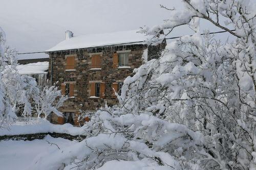 2008 12 17 Ma maison devant des arbres enneigés