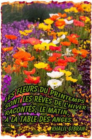 khalil_gibran_fleurs_printemps