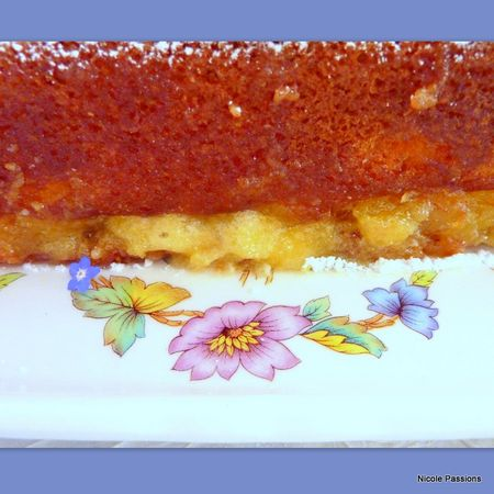 gateau_pommes_calissons20