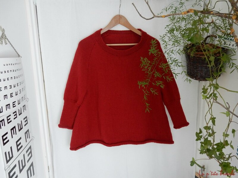 Le pull over rouge 1