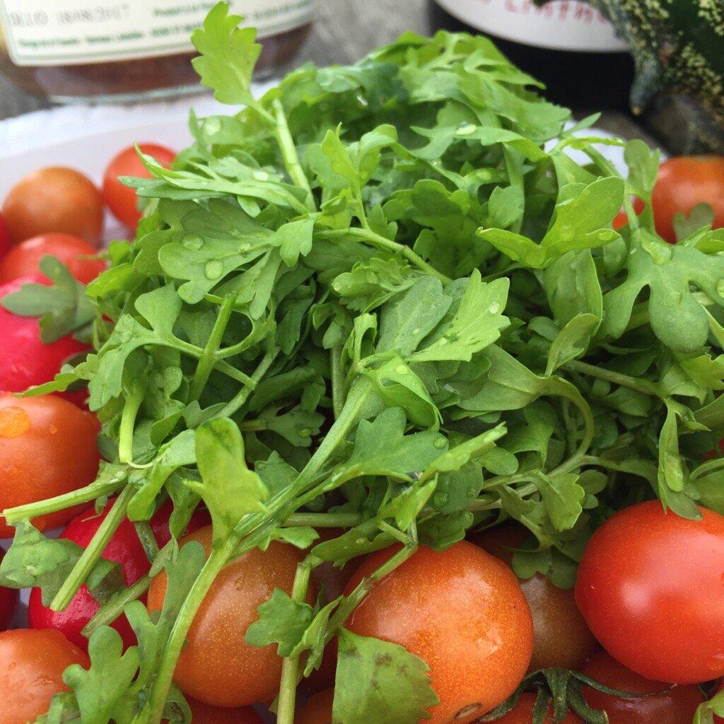 Salade de chou rouge cresson des jardins et sardines - Culture du cresson de jardin ...