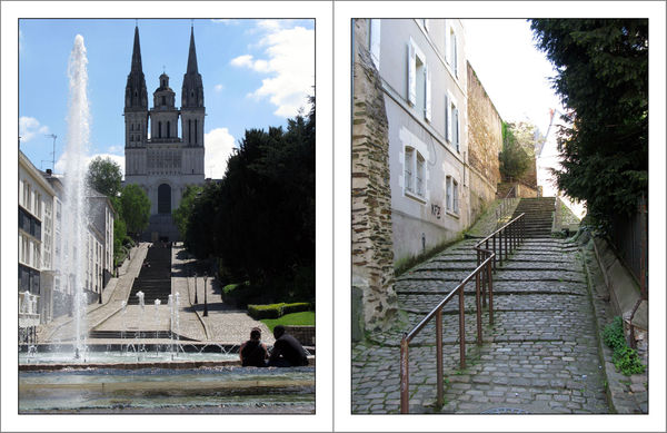 Angers_51_W