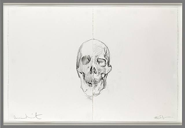 Michael Joo, Untitled skull drawing diptych (1), 2006