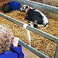 Challenge 7 ♥ visiter une ferme ♥