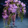 Orchidées vanda dans une flûte en verre noël