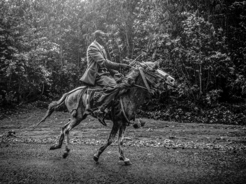 entoto cheval 1065