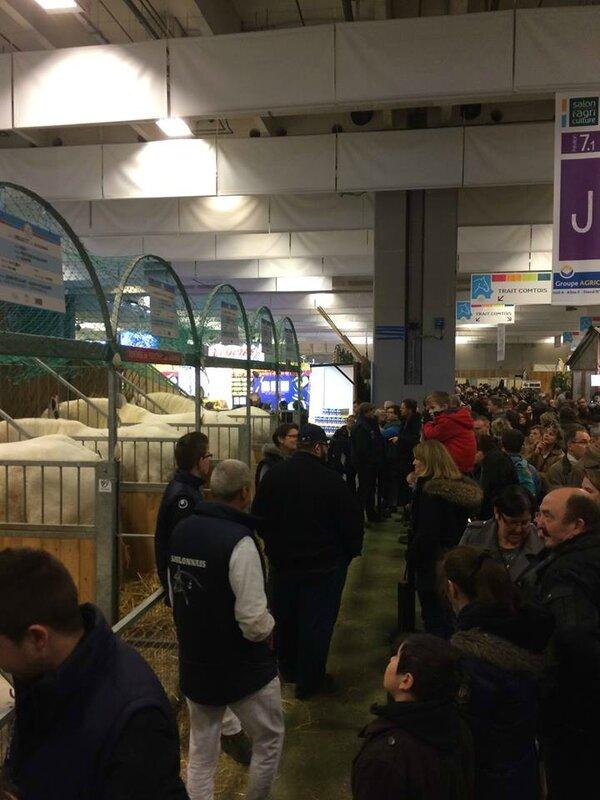 stalles Boulonnais - SIA - 22/02/2015